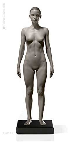 Female Proportional Figure